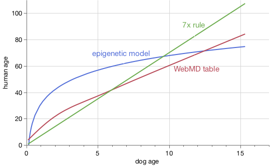 Comparison of three dog age formulas